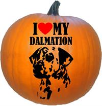 I Love My Dalmation
